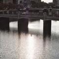 Photos: 猿猴橋