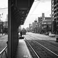 Photos: 日赤病院前