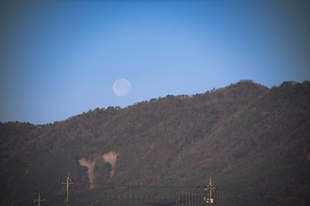 Photos: 月と爪痕