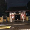成願寺・ライトアップ