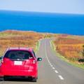 能取岬 海への道