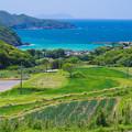Photos: 平戸の奥へ