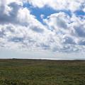写真: サロベツ原野へ