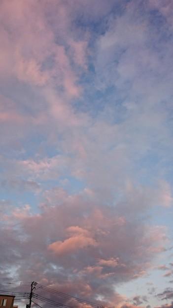 昨日の雲はさくら色?