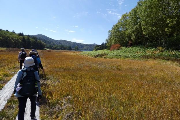大江湿原の草紅葉