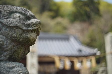 加茂町~山野町 (4)