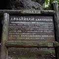 Photos: 岩屋権現 (9)