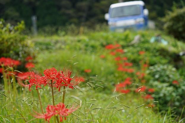 岡山県川上町 (2)