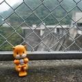 Photos: 岡山県高梁市 (1)