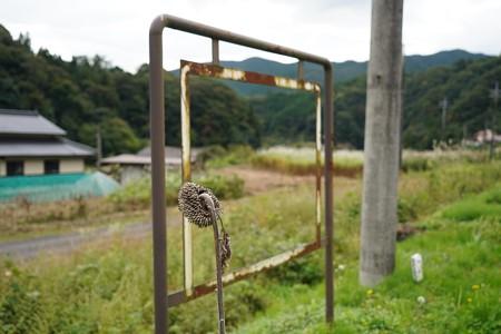 備後八幡駅 (5)