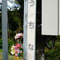 Photos: 内名駅 (1)