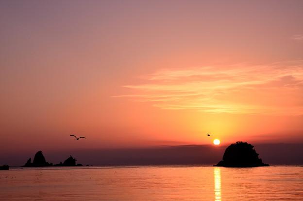Photos: 田子港からの夕日1