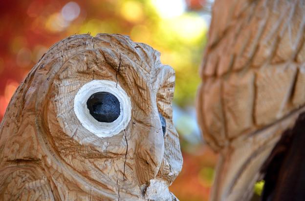 木彫りの梟