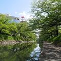 写真: ?意盎然。松川。