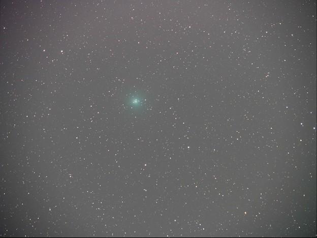 ウィルタネン彗星12月10日くじら座付近