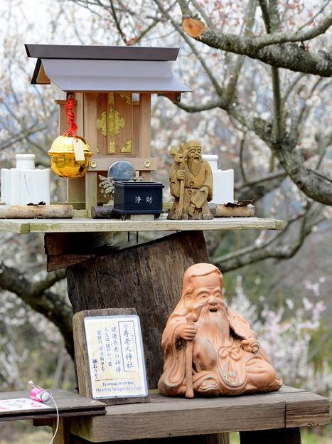 寿老人神社