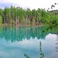 42 青い池