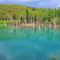 43 青い池