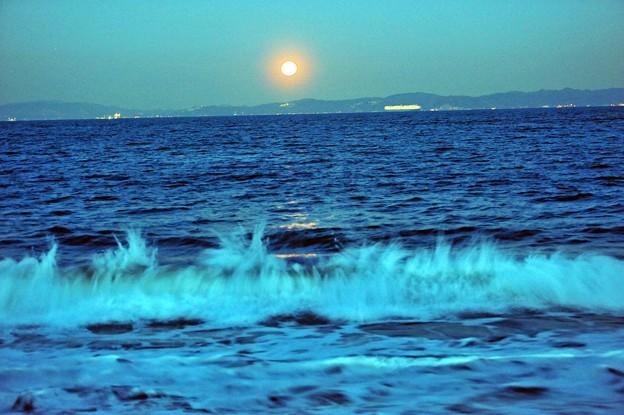写真: 05寄せる潮