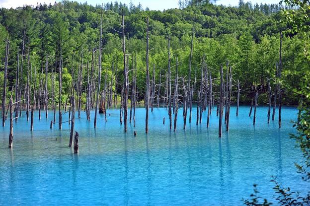19湖面ブルー