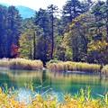 写真: 08 五色の水