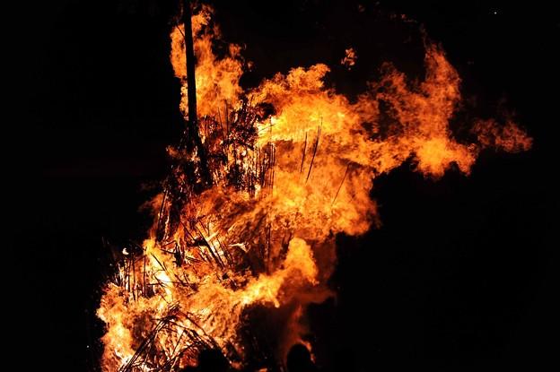 03 おんべの炎