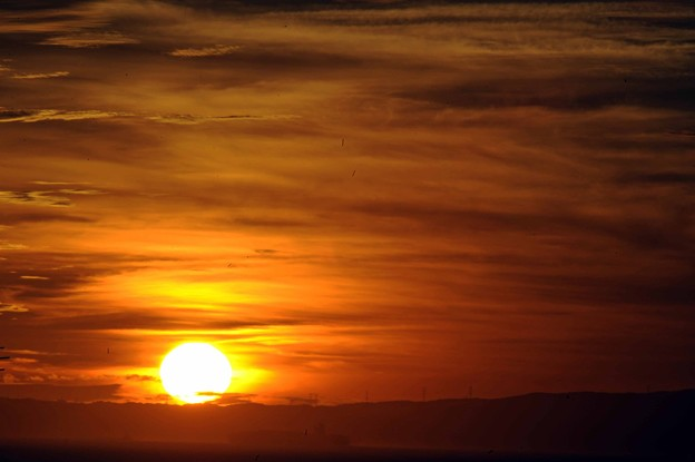 Photos: 04 染める太陽