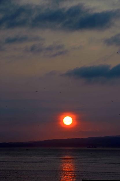 Photos: 15 さり気ない太陽