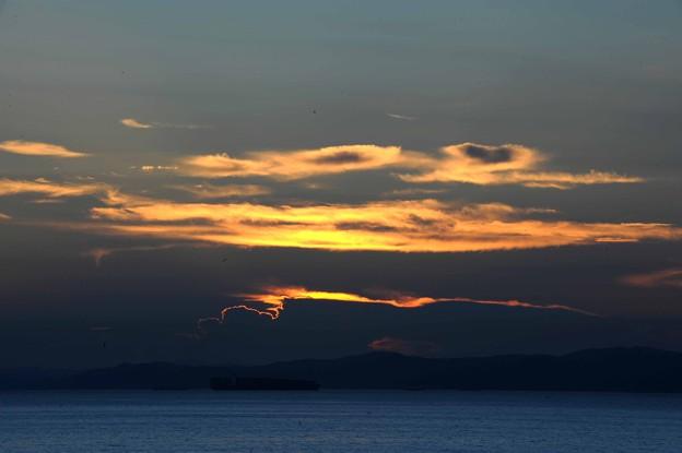 Photos: 47 朝の光線