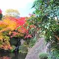06 秋の季節