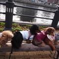 Photos: 運河パーク