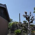 Photos: 杉野兵曹長顕彰碑