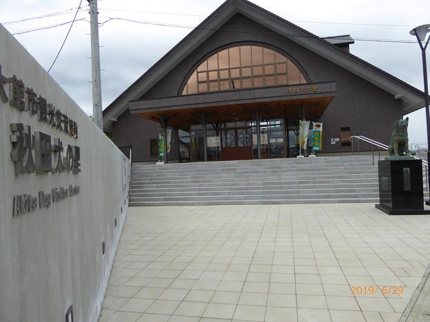 忠犬ハチ公像 大館(秋田犬の里前)
