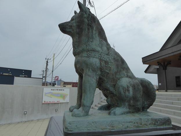 忠犬ハチ公像 大館(秋田犬の里)