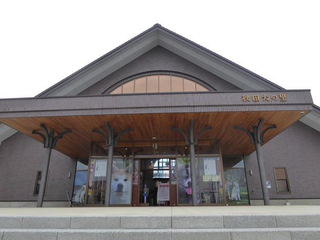 秋田犬の里(秋田県大館市)