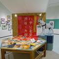 Photos: 忠犬ハチ公企画展示(秋田犬の里)