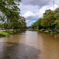 写真: シェムリアップ川は今日も汚い