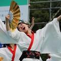 Photos: 踊りっこ 一期一会10