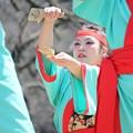 Photos: おどる春2017 輪13