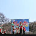Photos: おどる春2017 輪18