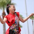Photos: おどるんや2017 西浜10