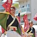 Photos: うらじゃ2017 四季09