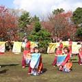 Photos: おどるんや秋2017 楽舞和12