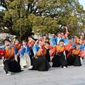 のつきみ祭2017 志舞踊02