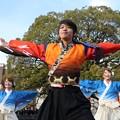 のつきみ祭2017 志舞踊03