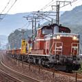 DD51ディーゼル機関車