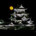 Photos: 白鷺の月