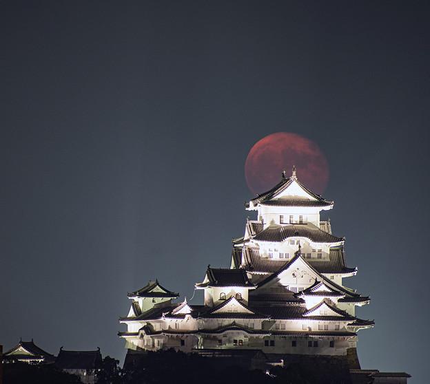 Photos: 十六夜の月