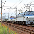 EF66 101号機