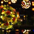 写真: 水の上に咲いた花火(1)